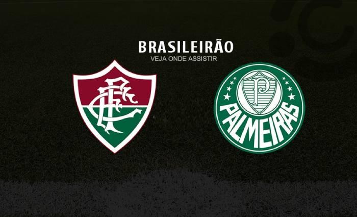 Soi kèo nhà cái Fluminense vs Palmeiras – VĐQG Brazil - 13/08/2020